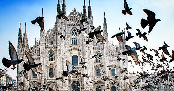 Гид по Милану: где есть, пить и делать покупки в модной столице Италии