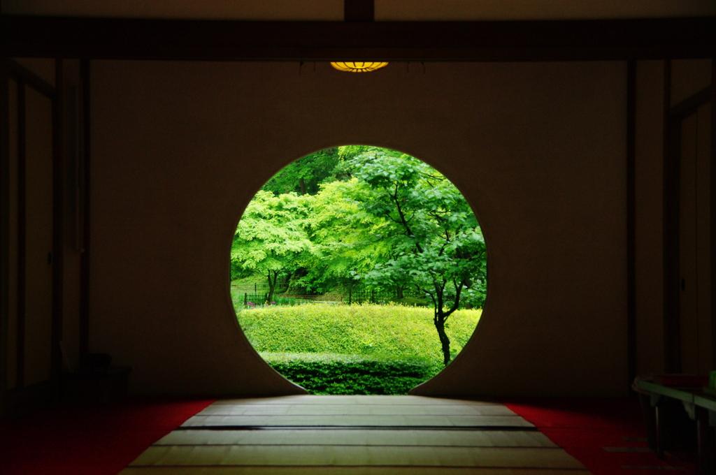 Японская чайная встреча в Киевском ботаническом саду «Чякай 2019. Архітектура навколо чаю»